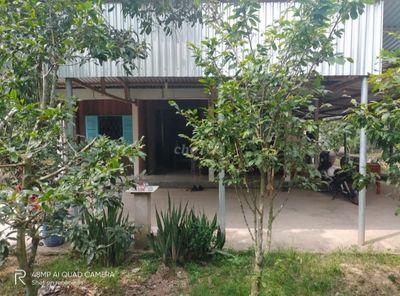 Bán đất Giao Hòa, huyện Châu Thành, Tỉnh Bến Tre