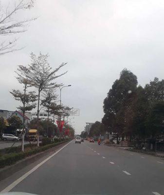 Cần bán lô đất 90m2(5×18) đường 295 thị xã từ sơn