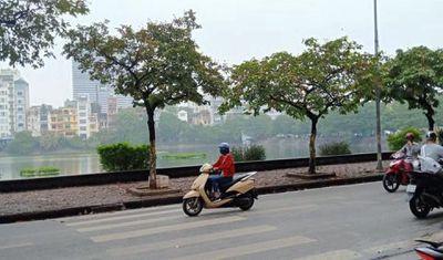 Chính chủ bán căn hộ chung cư cũ tại Nam Đồng