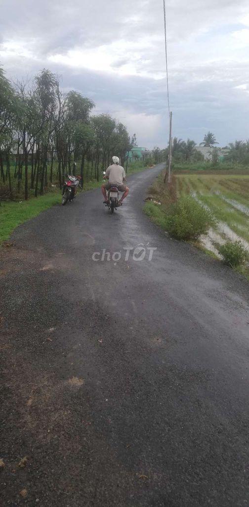 Đất mt giá rẻ Tiền Giang dt719m2 SHR