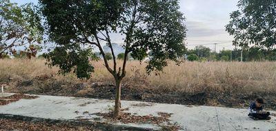 Bán đất trong khu dân cư Phước Hòa