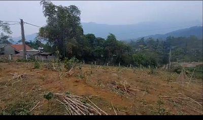 Đất rồng thôn Dy- Minh Quang- Ba Vì- Hà Nội .