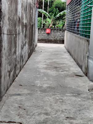 Bán đất 71,5m2 tại Văn Phong, Đồng Thái, An Dương