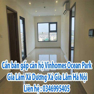 Cần bán gấp căn hộ Vinhomes Ocean Park Gia Lâm,