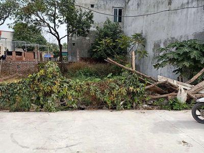 Đất ở 100% Bắc Thượng,Quang Tiến ,Sóc Sơn ,giá rẻ