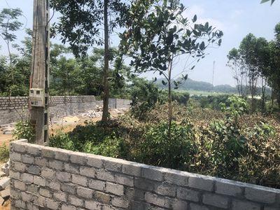 11000m View hồ Đồng Mô giá 1,7tr/m