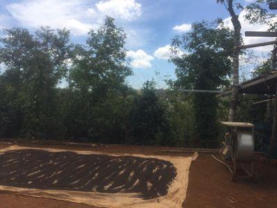 Đất trang trại Đắk Rtih