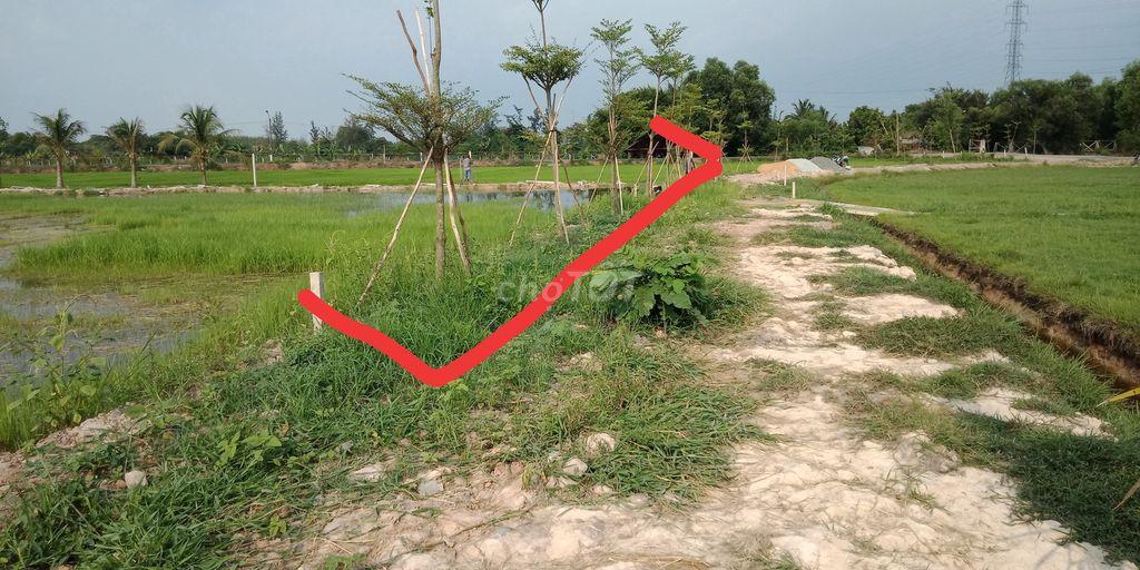 Đất vườn Củ Chi xã Trung Lập Hạ KCN Tây Bắc, SHR.