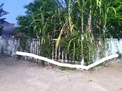 Cần bán nhanh lô đất 2mt La Châu,Hòa Khương,HV