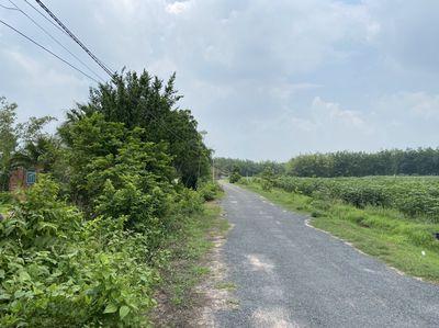 Đất đường nhựa, hậu dài, có thổ cư và sổ hồng sẵn.