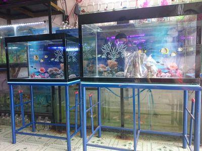 Bán hồ cá 40x80 MỚI kính 5ly đáy 8ly(NHẬN LÀM HỒ)