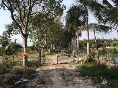 Bán đất Hàm tân,Bình Thuận. 8 héc rưỡi. Giá 25 tỷ