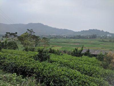 Đất nhà vườn đẹp Bắc Sơn SS sổ đỏ 16000m2, 5.3 tỷ