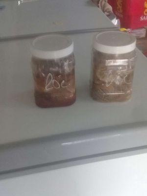Mắm cá lóc đồng 1 hủ 1kg