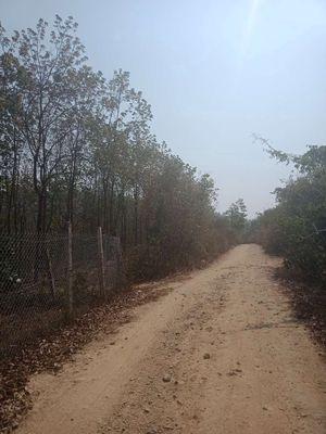 Đất Huyện Chư Păh 3hecta