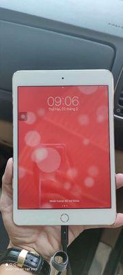 Ipad Mini 4 16G Wifi Gold 99% Zin chính chủ