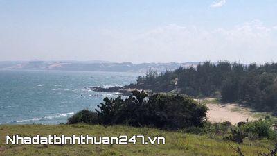 Đất biển Hoà Thắng 1000m2 có 400 thổ cư, giá 4 tỉ
