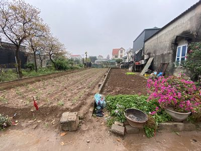 Cần bán Xâm thị, Hồng Vân,Thường Tín -68m/550trieu