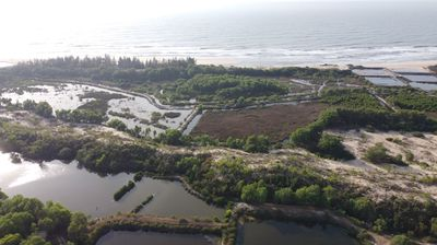 Cần 8 xào 7 đất ven biển xã Tân tháng thị xã lagi