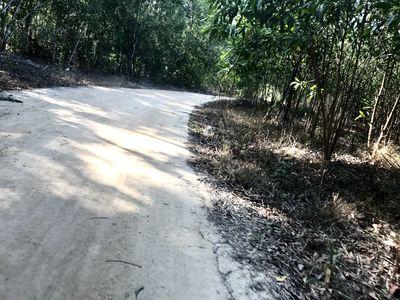 4 sào đất gần KCN Becamex Tx. Lagi