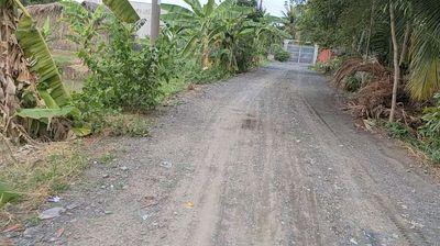 Đất lúa Tân nhựt mặt tiền đường xe tải