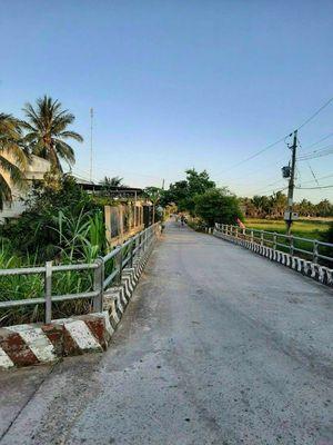 Đất mặt tiền, Lộ Cầu Mới, Phú Nhuận, TP Bến Tre