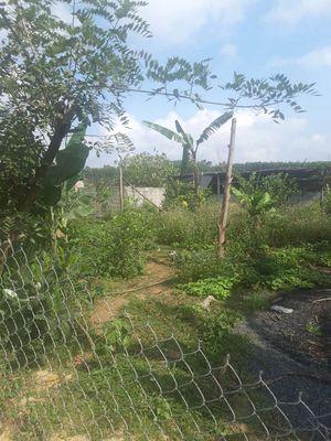 Tổng hợp đất vườn bà nà