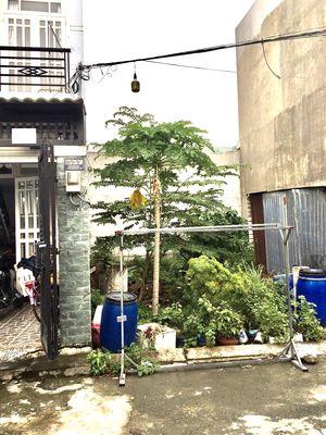 Lô đất đường Đình Phong Phú, P.Tăng Nhơn Phú B, Q9