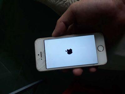 Apple iPhone 5S Vàng 32G