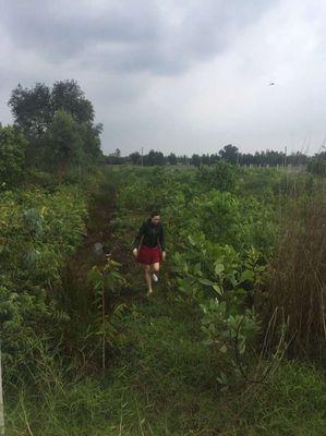 Đất Huyện Bình Chánh 1.300m2