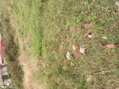 Bán đất sổ 50 năm ở Tả Thanh Oai,  300m giá 5tr/m