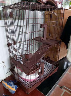 Thanh lý chuồng mèo 120×60×80 tặng chậu vệ sinh