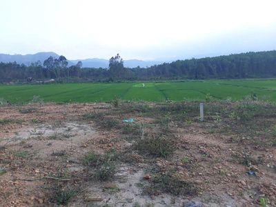 Đất giá rẻ 440m2 có ít đất ở, nuôi chim.yến ổn