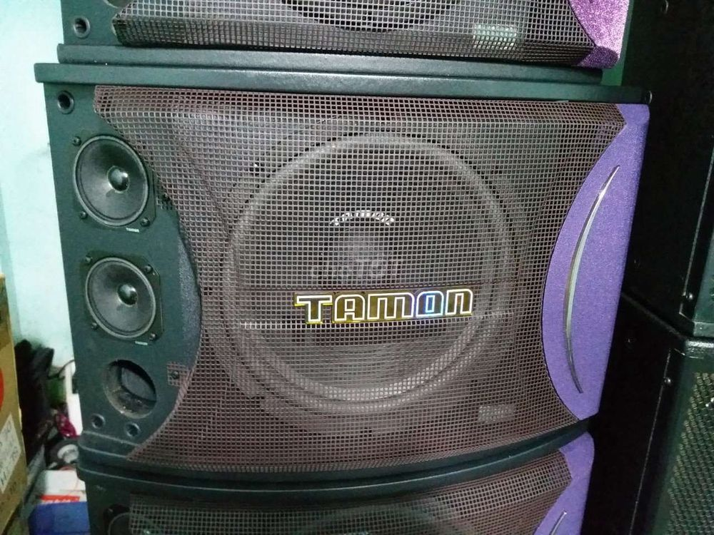 Loa tamon bass 30. Fts 3000