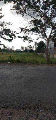 Đất ở Thị trấn Giao Thạnh 1800m2