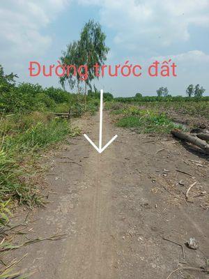 Chính chủ đất Bến Lức Long An 2306m2 DT816