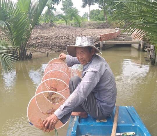 0961271298 - Cua Cà Mau - Hương vị đất mũi