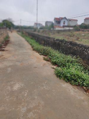 Bán đất Lan Mẫu, Lục Nam, Bắc Giang Giá Rẻ