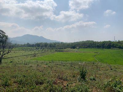 đất vườn có 200m2 đất ở hoà ninh gần bà nà hill