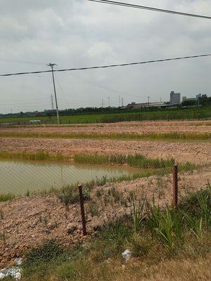 Cần mua đất lên vườn