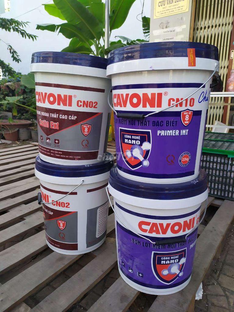 0392853626 - Sơn Cavoni