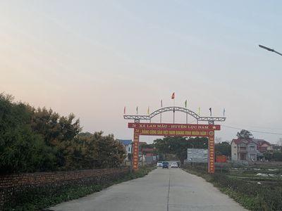 Chính chủ lô đất 968m2 Lan Mẫu,Lục Nam,Bắc Giang