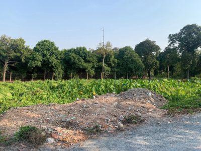 Đất View Rạch, An Sơn-Thuận An, Đường xe tải thông