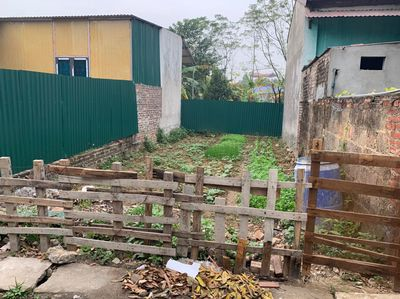 Cần bán đất cc tại  Hương Gia, Phú Cường, Hà Nội