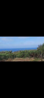 Đất view biển đảo phú quý. Giá rẻ cho nhà đầu tư