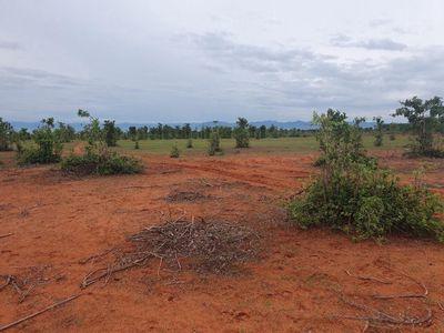 Đất VEN BIỂN , gần hồ nước Rạng Đông đã có sổ