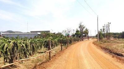 Đất 4.73ha đường ô tô,  Tân Phúc- Bình Thuận 2.32