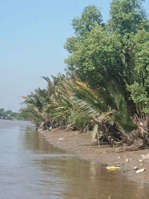 Đất thổ cư ven sông giá rẻ, cách Q7 20km