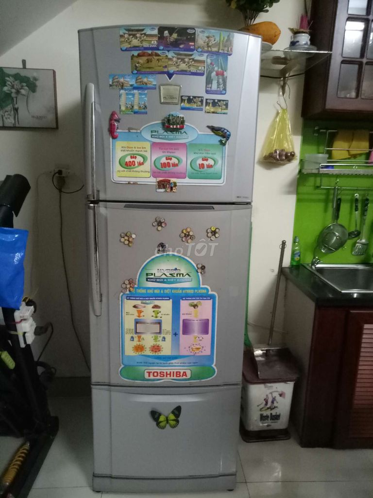 Tủ lạnh toshiba 350lit ko đóng tuyết