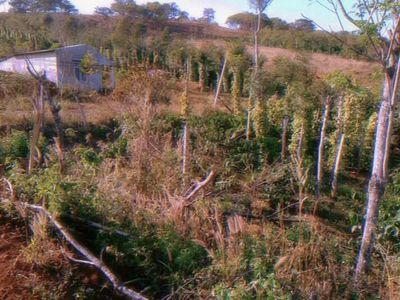 20×50m sổ nông nghiệp lên thổ cư tại Trường Xuân